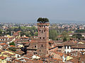 Torre Guinigi, Lucca.jpg