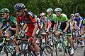 Tour de France 2014 - étape 15 - Rustrel - Peloton 8.jpg