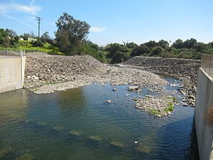 Trabuco Creek - Trabuco Creek shortly downstream of a culvert below Interstate 5.