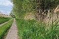 Track in Nauen 2020-05-15 07.jpg