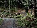 Track near the Nant Peiran - geograph.org.uk - 1090902.jpg