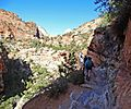 Trail to Overlook, Zion NP 4-13 (15712991178).jpg
