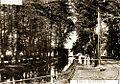 Tram Benrath 4.jpg