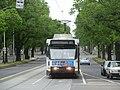 Tram on Royal Parade, Parkville, Melbourne.jpg