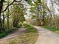 Trans Pennine Trail - geograph.org.uk - 1279189.jpg