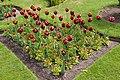 Trentham Gardens 2015 46.jpg