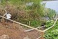 Trentham Gardens 2015 78.jpg