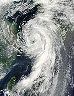 Tropical Storm Dianmu Approaching South Korea on August 10, 2010.jpg
