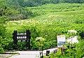 Tsugaike Nature Park s2.jpg