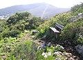Tygerberg Nature Reserve - City of Cape Town 5.jpg