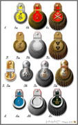 Types of epaulette of the Russian Empire (1855).png