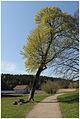 Tyresö slott 16.jpg