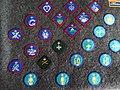 UK Scouts badge selection.jpg