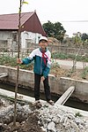 USAID supports tree planting in Nam Dinh Province (32503530343).jpg