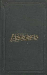 Underground, or Life below the surface - Thomas Wallace Knox (1873).pdf