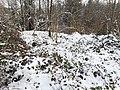 Untere Heidenburg, oben (Winter).jpg