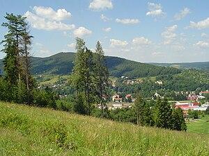 Ustrzyki Dolne - Image: Ustrzyki Dolne, Panorama z Gromadzynia, Lato