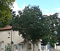 Valence, Drôme, France. Domaine de Valensolles 05.jpg