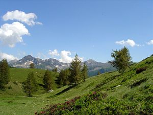 Mercantour National Park - Vallon de Mollières, Mercantour National Park, France 2004-07-4