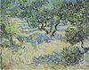 Van Gogh - Olvivenhain.jpeg