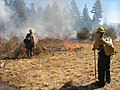 Van Vleck Meadow Prescribe Burn -Eldorado NF (4008940139).jpg