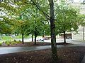 Vestal, NY 13850, USA - panoramio (98).jpg