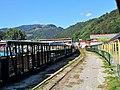 Vișeu de Sus, Romania - panoramio (9).jpg