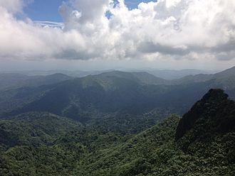El Yunque National Forest - View towards Pico Los Picachos from the top of Pico El Yunque. The visibility for local conditions was exceptional for that day.
