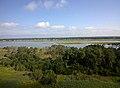 View from Assateague Lighthouse -throughglass (14470707467).jpg