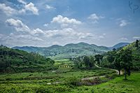 View in the way to Paderu.jpg