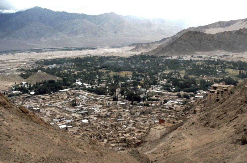 View of Leh.jpg