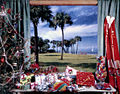 View showing Christmas presents and tree by the window in Sarasota, Florida.jpg