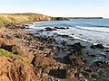 View south from Freshwater West - geograph.org.uk - 1287619.jpg