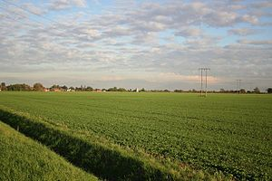 Timberland, Lincolnshire - View eastwards towards the village