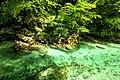 Vintgar Gorge (35771673876).jpg