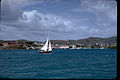Virgin Islands National Park VIIS2320.jpg