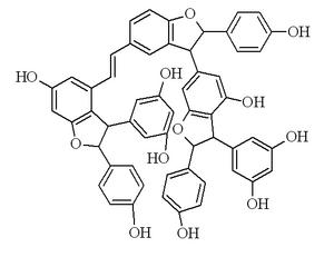 Vitisin B (stilbenoid) - Image: Vitisin B (resveratrol tetramer)