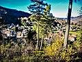 Vue sur le village, depuis le Bannwehr.jpg