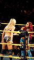 WWE NXT 2015-03-28 00-12-56 ILCE-6000 3899 DxO (17179395980).jpg