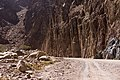 Wadi Gnai 2020-03-08-8.jpg