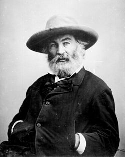 Walt Whitman by Mathew Brady.jpg