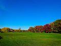 Warner Park during Autumn - panoramio (1).jpg
