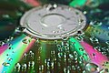 Water droplets on a Compact Disk.JPG