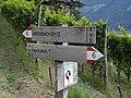 Weg6 Kirchbachspitze6.jpg
