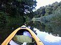 Welna river Rogozno (244).jpg