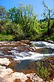 Willamina Creek (Yamhill County, Oregon scenic images) (yamDA0098).jpg