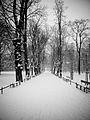 Winter in Krakow (3282120137).jpg