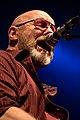 Wishbone Ash 2015 - 03.jpg