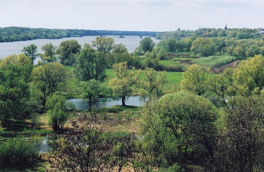 Wisla-kolo-Torunia