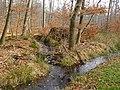 Wolbecker Tiergarten (16).JPG